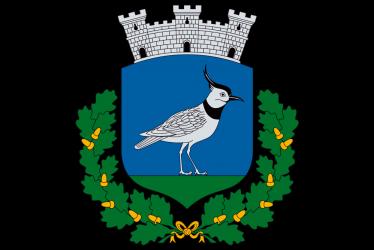 Nagybajom város címere