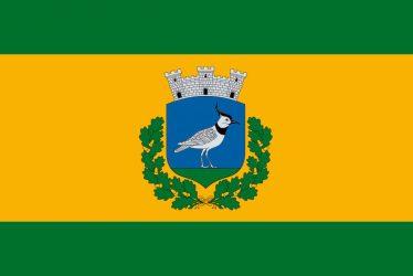 Nagybajom város zászlója